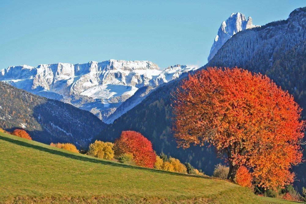 Il paesino alpino di Laion: una vacanza appassionante nell'autunno dorato