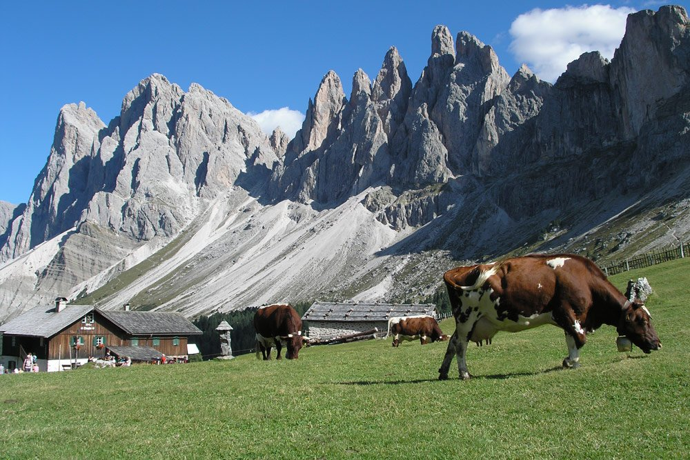 Holiday in Val Gardena: holiday in the outdoor paradise