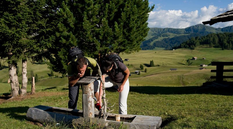Excursionistic holiday in the Dolomites: nature and culture in Val Gardena